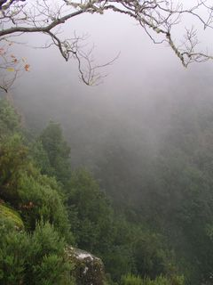 Clouds in Madeira's Mountains
